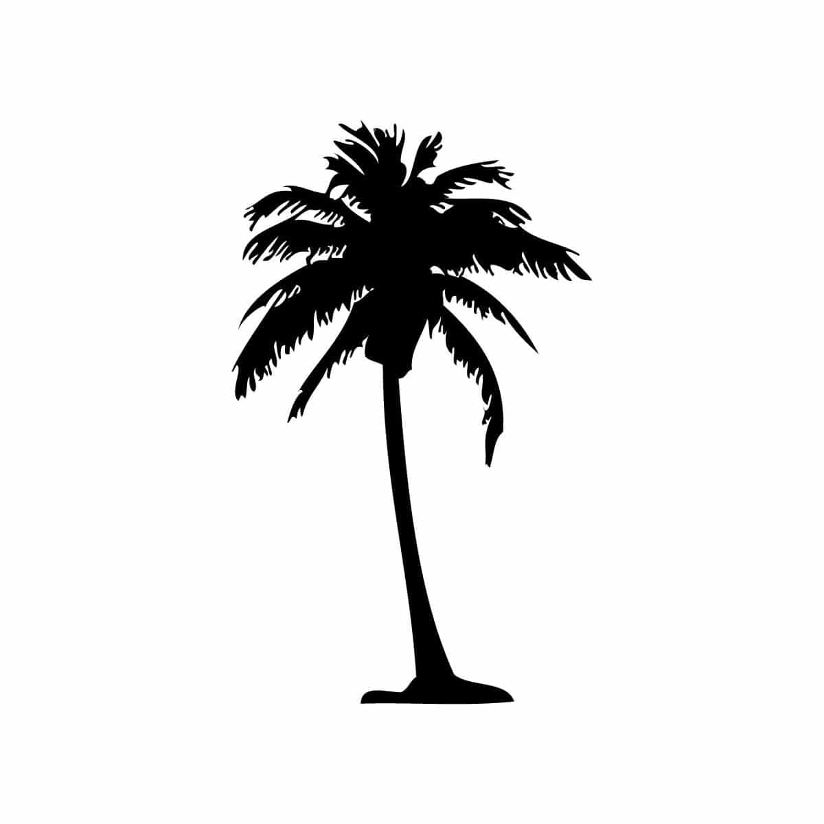 Vanilla Palm Tree